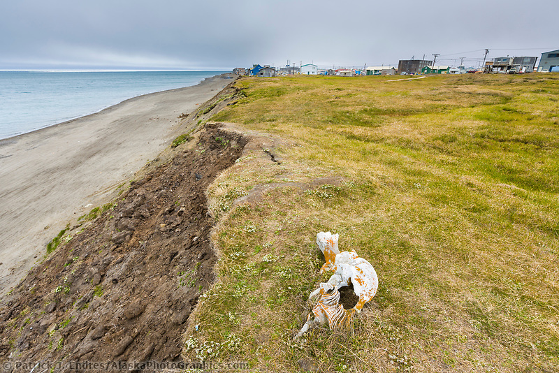 Coastal erosion along the shores of the Arctic ocean in Barrow (Utqiagvik), Alaska.