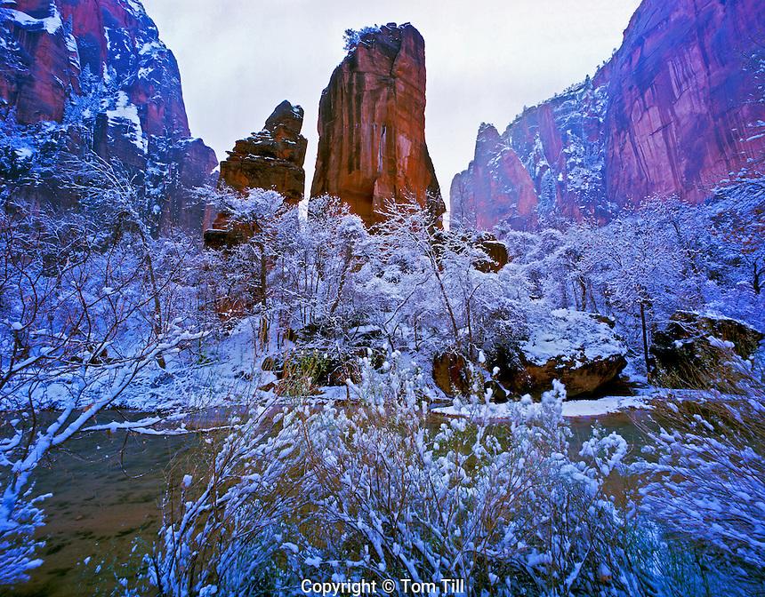 Snow at Temple of Sinawava  Zion National Park, Utah  Zion Canyon  Virgin River   Large pinnacle at foot of Zion Narrows