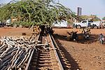 BURKINA FASO Kaya, tree on ababdoned railway track / BURKINA FASO Kaya mit einem Baum zugewachsene Eisenbahnschiene