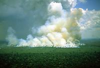 imagem aérea de uma grande queimada na floresta amazônica em Rondônia. Outubro de 2004