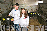 Thomas and Orla OConnor pictured with their calf at Mighty Mikeys birthday party at Lee Strand, Tralee on Saturday..