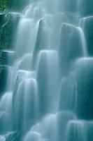 Proxy Falls <br /> Three Sisters Wilderness<br /> Willamette National Forest <br /> Cascade Range, Oregon