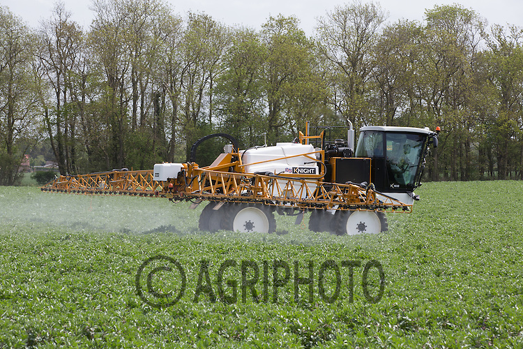 Spraying Winter beans with fungicide <br /> Picture Tim Scrivener 07850 303986
