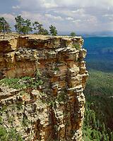 Ponderosa Pine trees (Pinus ponderosa) and cliff face on the Mogollon Rim; Apache-Sitgreaves National Forest, AZ