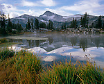 Wallowa-Whitman National Forest  <br /> Eagle Cap peak with reflections from the grassy shore of Sunshine Lake, in the Lake Basin of the Eagle Cap Wilderness