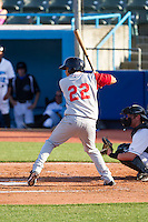 Dimas Ponce (22) of the Brooklyn Cyclones at bat against the Hudson Valley Renegades at Dutchess Stadium on June 18, 2014 in Wappingers Falls, New York.  The Cyclones defeated the Renegades 4-3 in 10 innings.  (Brian Westerholt/Four Seam Images)