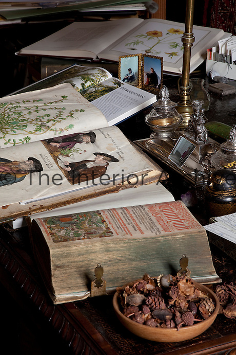 An early modern herbal and an illuminated manuscript sit alongside contemporary books on botany