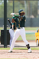 Oakland Athletics left fielder Lazaro Armenteros (13) at bat during an exhibition game against Team Italy at Lew Wolff Training Complex on October 3, 2018 in Mesa, Arizona. (Zachary Lucy/Four Seam Images)