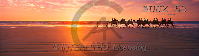 Dr. Xiong, LANDSCAPES, panoramic, photos, sunset, beach, camels, Australia(AUJX53,#L#)