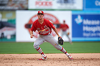 Palm Beach Cardinals third baseman Danny Diekroeger (4) during the first game of a doubleheader against the Dunedin Blue Jays on August 2, 2015 at Florida Auto Exchange Stadium in Dunedin, Florida.  Palm Beach defeated Dunedin 4-1.  (Mike Janes/Four Seam Images)