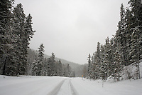 A view of the State Highway 89 leading to Showdown Ski Area in the Little Belt Mountains near Neihart, Montana, USA.