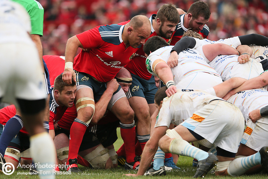 BJ Botha, Munster Front Row