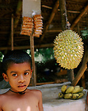 SRI LANKA, Asia, portrait of a boy standing near Durian fruits