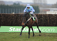 Grand National 2013 Preview