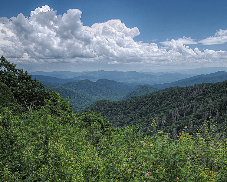 The first day of Summer in the Great Smoky Mountains National Park, as viewed from an overlook along Highway 441. HDR image made with 3 separate exposures.