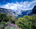 Half Dome and Yosemite Valley, Yosemite Valley National Park, California