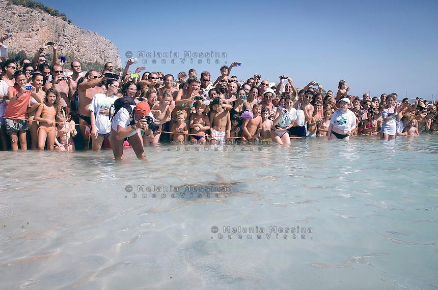 Palermo, una tartaruga caretta caretta viene rilasciata nella spiaggia di Mondello dopo essere stata guarita dai volontari del WWF.<br /> <br /> Palermo, a loggerhead turtle is released into the Mondello beach after being healed by volunteers from WWF