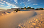 Sand dunes in wind-swept patterns on the beach at Nehalem Bay State Park, Oregon, USA