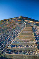 Sand Ladder at Windy Ridge, Mt. St. Helens National Volcanic Monument, Washington, US