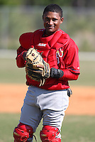 March 19, 2010:  Catcher Luis De La Cruz of the St. Louis Cardinals organization during Spring Training at the Roger Dean Stadium Complex in Jupiter, FL.  Photo By Mike Janes/Four Seam Images