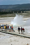 WY: Wyoming; Yellowstone National Park:.Lower Geyser Basin, Fountain Geyser.Photo #: yellow1291..Photo copyright Lee Foster, 510/549-2202, lee@fostertravel.com, www.fostertravel.com..