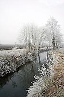 Cognac Region Charente France Europe. .©shoutpictures.com..john@shoutpictures.com