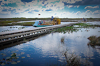 Airboat tour through 'River of Grass' to Miccosukee Indian Village, Everglades National Park, Florida, USA. Photo by Debi Pittman Wilkey.