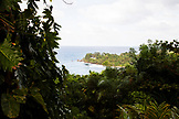 JAMAICA, Port Antonio. A view of the coastline from the Geejam Hotel.