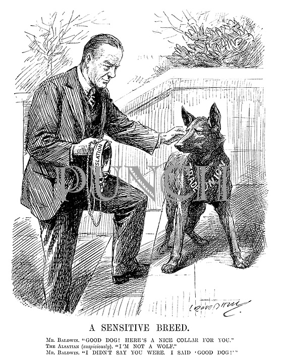 """A Sensitive Breed. Mr Baldwin. """"Good dog! Here's a nice collar for you."""" The Alsatian (suspiciously). """"I'm not a wolf."""" Mr Baldwin. """"I didn't say you were, I said 'good dog!'"""" (cartoon showing British Prime Minister Stanley Baldwin readying the Legislation collar for the Trade Union dog during the InterWar era)"""