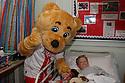 Borobear<br /> Stevenage FC players visit Lister Hospital Children's ward.  <br />  - Lister Hospital, Stevenage - 18th December, 2013<br />  &copy; Kevin Coleman 2013
