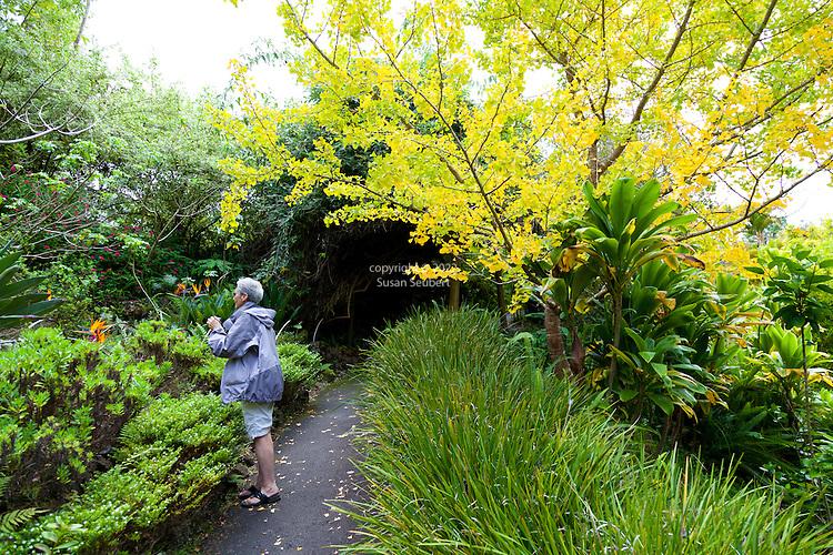 The Kula Botanical Garden, Maui, Hawaii