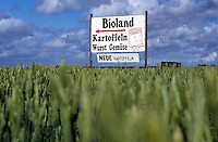 "Europa Deutschland DEU  .Getreidefeld mit Bioland Hofladen Schild -  Bio ?ko ?kolandwirtschaft Biobauern Biolandwirtschaft Landwirtschaft Direktvermarktung Verkauf ab Hof Biobauernhof Ackerbau Landbau Anbau Feldwirtschaft Feld Felder Acker Boden Bauer Bauern Getreide Korn Brot EU Subventionen Agrarsubventionen xagndaz | .Europe Germany GER  .organic agriculture Bioland board in grain field - agriculture farming field soil farm farmer peasant cereal grain crop .| [ copyright (c) Joerg Boethling / agenda , Veroeffentlichung nur gegen Honorar und Belegexemplar an / publication only with royalties and copy to:  agenda PG   Rothestr. 66   Germany D-22765 Hamburg   ph. ++49 40 391 907 14   e-mail: boethling@agenda-fototext.de   www.agenda-fototext.de   Bank: Hamburger Sparkasse  BLZ 200 505 50  Kto. 1281 120 178   IBAN: DE96 2005 0550 1281 1201 78   BIC: ""HASPDEHH"" ,  WEITERE MOTIVE ZU DIESEM THEMA SIND VORHANDEN!! MORE PICTURES ON THIS SUBJECT AVAILABLE!! ] [#0,26,121#]"