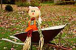 Fall scarecrow on wheelbarrow.