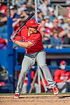 6 March 2019: Philadelphia Phillies catcher Matt McBride at bat during a Spring Training game against the Toronto Blue Jays at Dunedin Stadium in Dunedin, Florida. The Blue Jays defeated the Phillies 9-7 in Grapefruit League play. Mandatory Credit: Ed Wolfstein Photo *** RAW (NEF) Image File Available ***