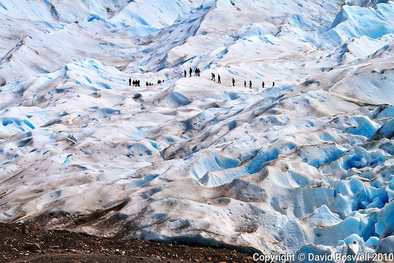 A group trekking on the blue ice of Glacier Perito Moreno in Parque Nacional los Glaciares, Argentina.
