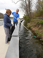 NWA Democrat-Gazette/FLIP PUTTHOFF <br /> PICKING UP AT CLEANUP<br /> Mark Hall with the Downtown Rogers Rotary Club fishes an aluminum can out of Lake Atalanta on Saturday April 21 while he and his wife, Kathy Hall, volunteered during a cleanup day at Lake Atalanta Park near downtown Rogers. Individuals, families and organizations took part in the event working in all areas of the park and along the shoreline of Lake Atalanta. The city of Rogers, Ozark Water Watch, Benton County Extension Office and Downtown Rogers Rotary Club organized the cleanup.