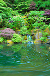 A long exposure of Heavenly Falls lower pond shows the swirl movement of the foam on the water in the Spring at the Portland Japanese Garden