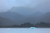 Icebergs from Chenega Glacier float in Nassau Fjord, Prince William Sound, Chugach National Forest, Kenai Peninsula, southcentral, Alaska.