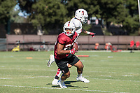 Stanford Football Practice and Fan Fest, August 18, 2019