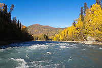 Rapids in the upper Kenai River canyon are lit by the falltime sun.