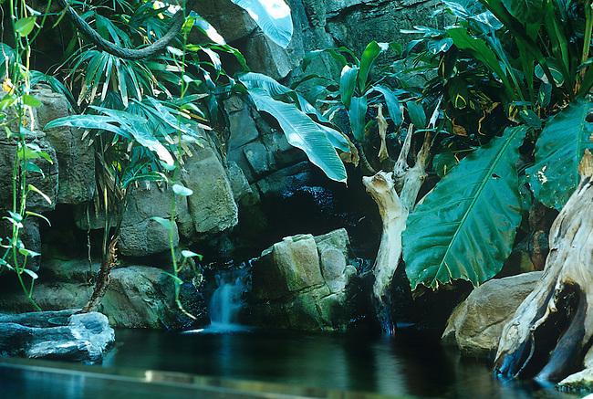 Tropical Discovery, Denver Zoo, Colorado