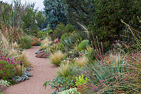 Gravel path through mixed border in Roads Water-Smart Garden in Denver Botanic Garden