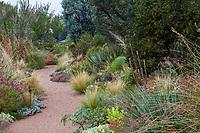 Gravel path through mixed border in Roads Water-Smart Garden in Denver Botanic Garden