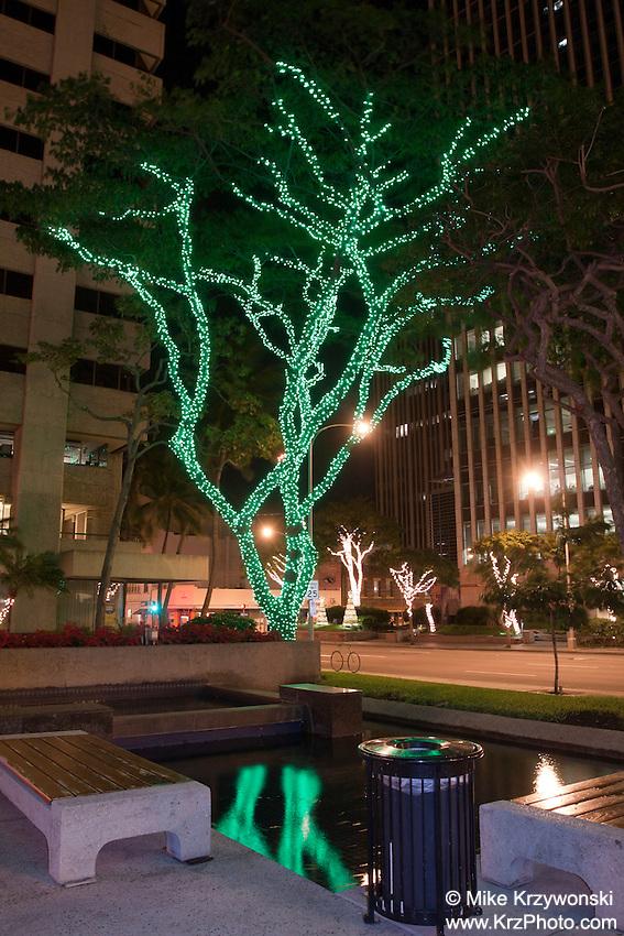 Tree decorated w/ green Christmas lights reflecting in water in Downtown Honolulu, Oahu, Hawaii