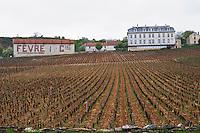 hotel hostellerie emile vineyard nuits-st-georges cote de nuits burgundy france