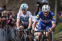 Yves Lampaert (BEL/Quick Step Floors) up the 3th passage of the Oude Kwaremont. <br /> <br /> <br /> 102nd Ronde van Vlaanderen 2018<br /> 1day race: Antwerp › Oudenaarde - BEL (265k)