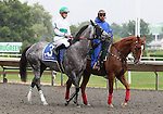 4 July 2009: INFORMED DECISION and jockey Julien R. Leparoux in the post parade for the 21st running of the Chicago Handicap at Arlington Park in Arlington Heights, Illinois.