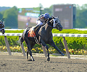Met Mile Day at Belmont Park - 05/27/2013