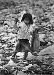 "Girl rummaging in a garbage dump near a large (2.5 Million resident) squatter settlement called ""Neza"" (Nezahualcoyotl) in Mexico City. This is days after an Earthquake (Sept. 19) did major damage to downtown Mexico City, in September, 1985. Photo by Jim Peppler. Copyright/Jim Peppler/."