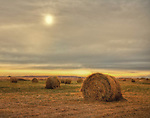 Hay Bales in the golden sun of Nebraska